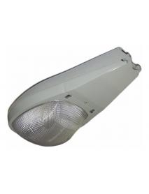 LAMP T/COBRA 250W COMPLETA